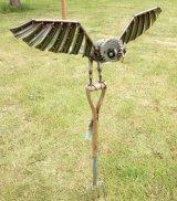 Barn Owl on a Fork