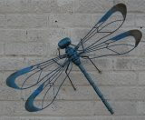 Painted Wall Dragonflies