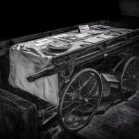 COFFIN CART By Michael Mears