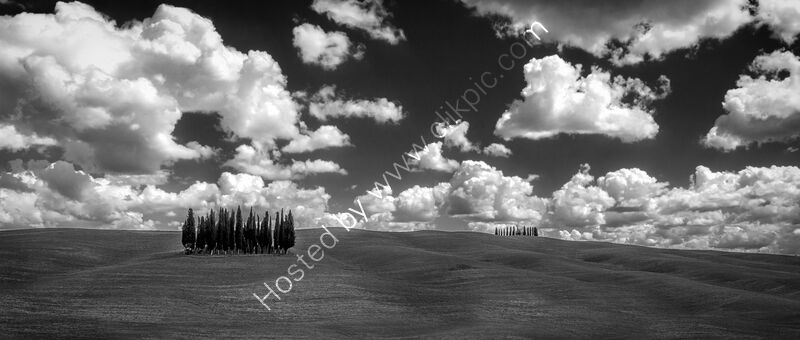 COPSE & CLOUDS, TUSCANY by Ashley Franklin