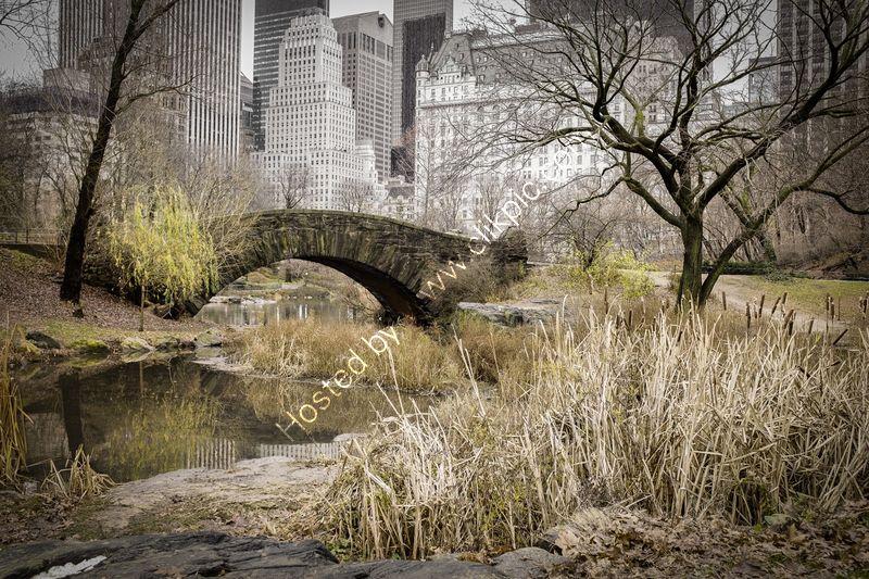 GAPSTOW BRIDGE by Nigel Seale.