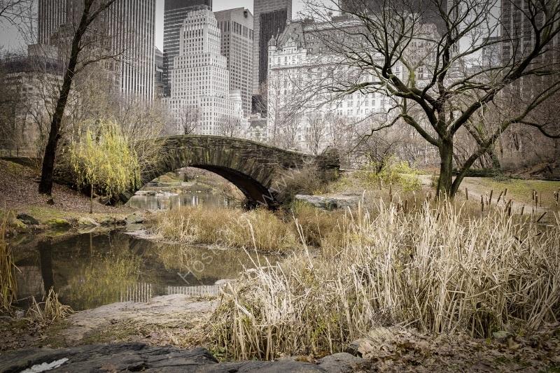 GAPSTOW BRIDGE by Nigel Seale
