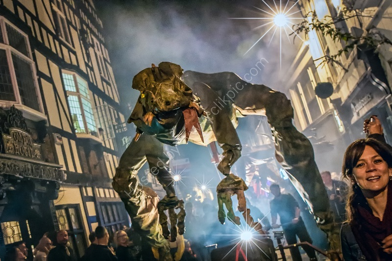 HERE BE DRAGONS, DERBY FESTE by Ashley Franklin