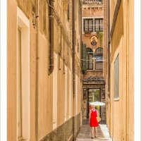LADY IN RED by Peter Ward