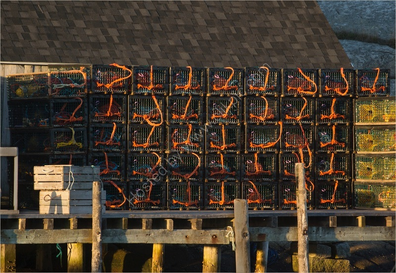 LOBSTER POTS by Gill Dishart