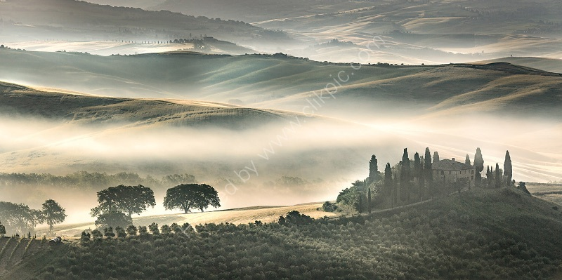 MISTY MORN, BELVEDERE, TUSCANY by Ashley Franklin