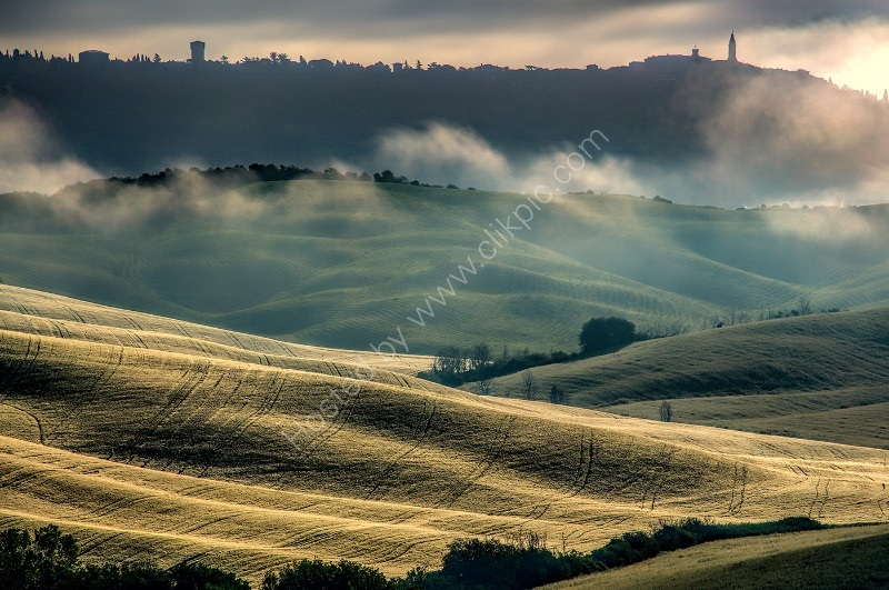 MORNING MIST, BELVEDERE by Ashley Franklin