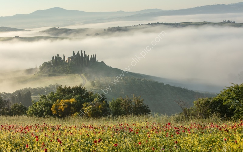 MORNING MIST VAL D'ORCIA by Mike Arblaster