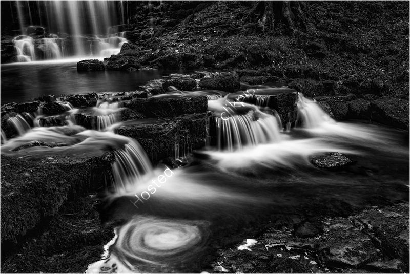 SCALEBER FORCE, DIVIDED by Mark Constable