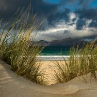THE BEACH BEYOND by Mark Constable
