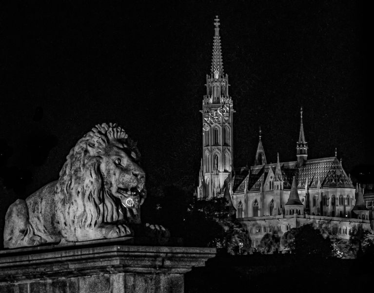 THE LION AND THE CHURCH by Tony Barker