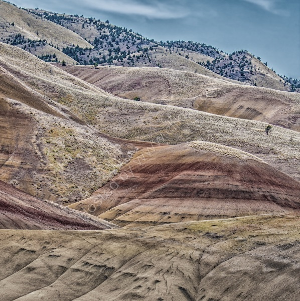 THE PAINTED HILLS OF OREGON by Tony Barker
