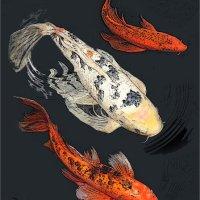 THREE KOI by Sue Swain