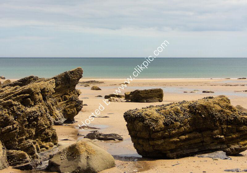 WISEMANS BEACH by David Harrison