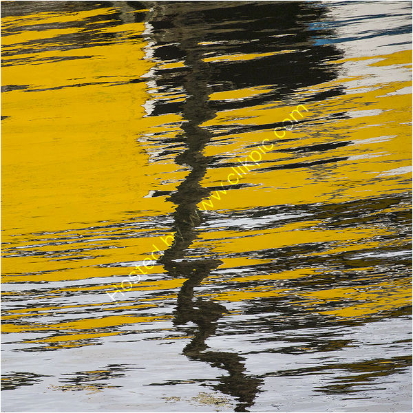 YELLOW REFLECTION by Gill Dishart