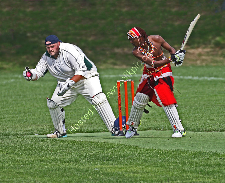 ZULU AT CRICKET by Stanley Annable