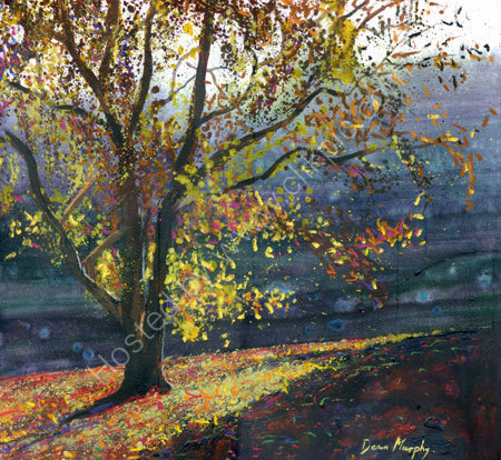 Autumn Sunlit Tree £495
