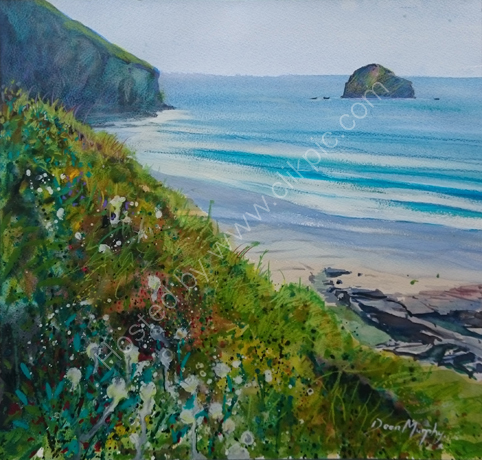 SOLD.Clifftop Flora Trebarwith Strand £495