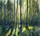Sunlit  Green Woodland Original SOLD