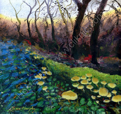 Mushrooms at Minster Boscastle £495