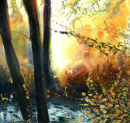 Orange Woodland Light. Original SOLD
