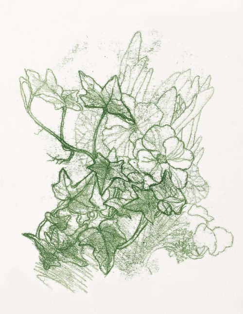 Ivy Monoprint