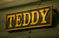 'TEDDY'