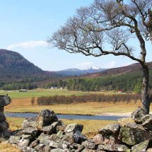 Looking Towards Geln Quoich, Braemar
