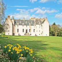 Spring at Drum Castle