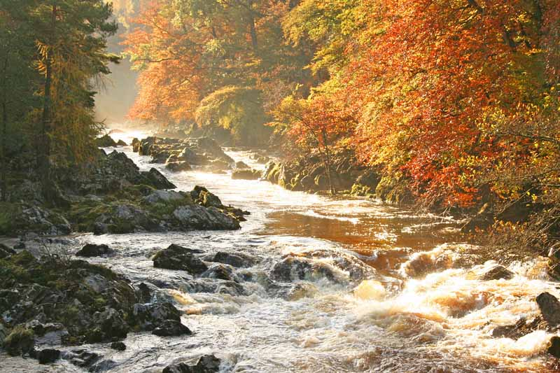 The Falls of Feugh, Banchory
