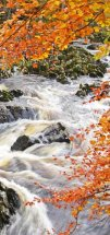 The Falls of Feugh