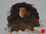 Little Wren (SOLD)