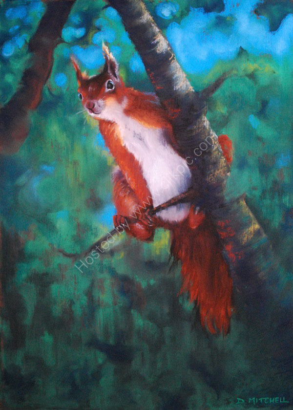 High in the Tree Tops (SOLD)