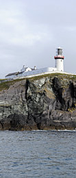 Galley Head, Co Cork, Sept '14