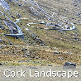 CORK LANDSCAPES