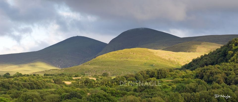 The Paps , Glenflesk , Co. Kerry , July ' 13 .