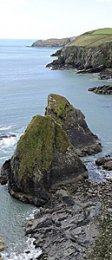 Nohoval Cove, Co Cork, May '14
