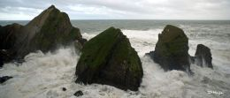 Nohoval Cove , Co. Cork , Aug ' 12 .