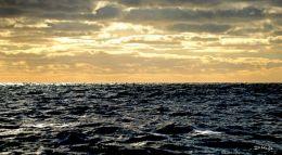 Rocky Bay , Co. Cork , Nov ' 10 .