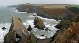 Nohoval Cove , Co. Cork , Oct ' 10 .