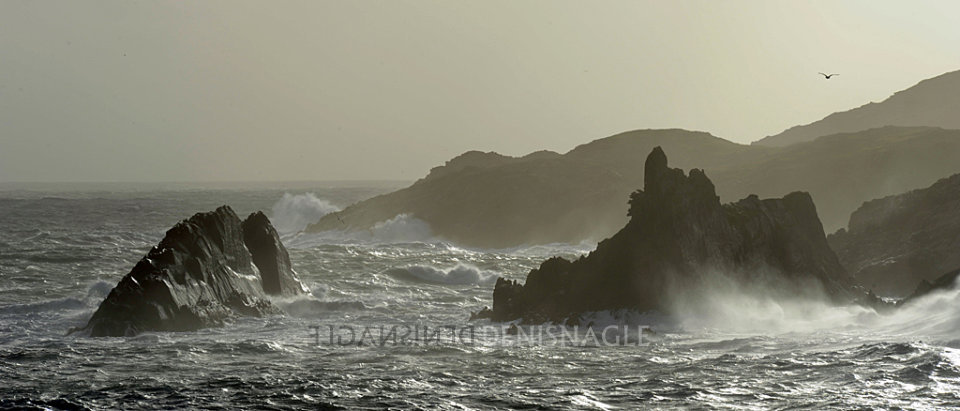 Sherkin Island, West Cork, Oct '14