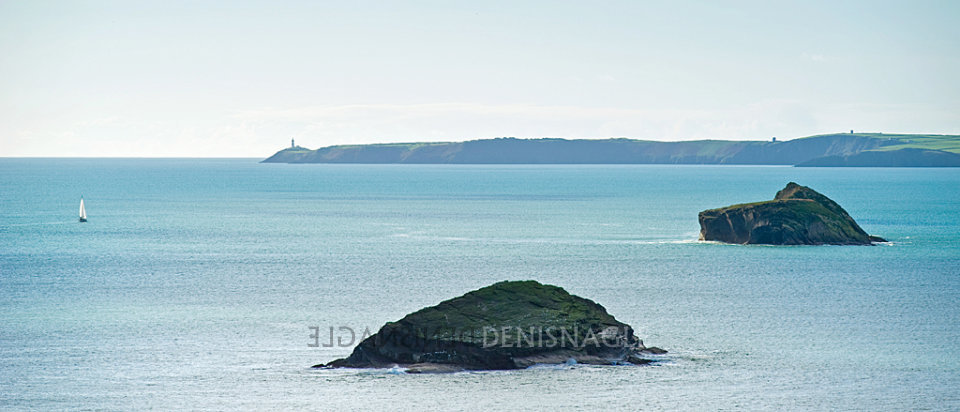 Sovereign Islands & the Old Head of Kinsale, Co Cork, Nov '11