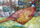Farmhouse Pheasant, SOLD