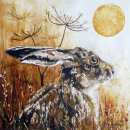 Solar Hare