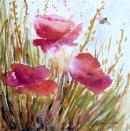 Bee-autiful poppies...£120