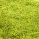 Long fibres - meadow green