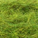 Heki XL grass fibres - summer