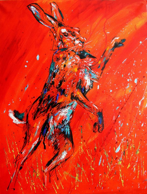 Boxing Hares : March Madness