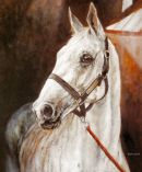 "The Great Grey chasers: Desert Orchid  Limited edition print 14""x10"""
