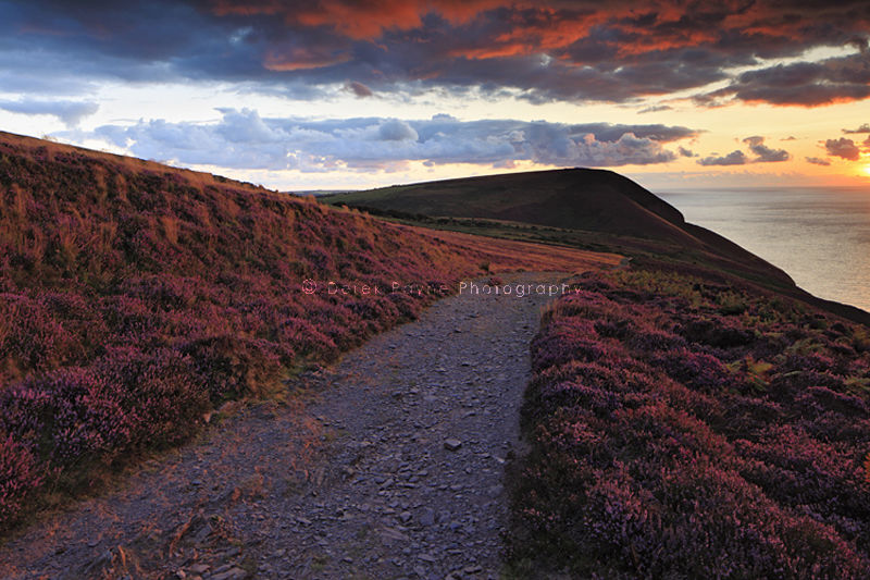 Coastal path on Hodstone Down at Sunset, North-Devon